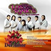 Viajeros Del Amor by Los Yonics