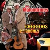 Corridos C@brones.com by Los Malandrines