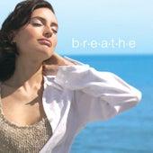 Breathe by Richard Evans