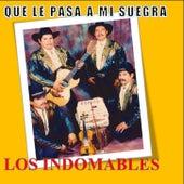 Que Le Pasa A Mi SUegra by Los Indomables