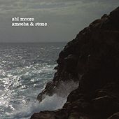Amoeba & Stone by Abi Moore