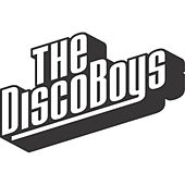 What You Want by The Disco Boys