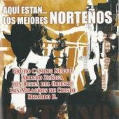 Aqui Estan…Los Mejores Nortenos by Various Artists