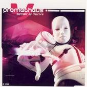 Corridor Of Mirrors by Prometheus