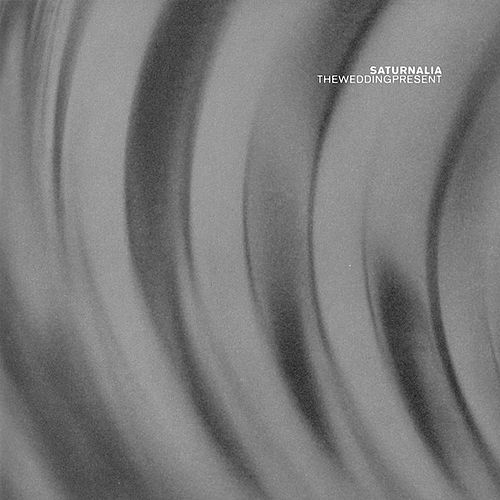 Saturnalia by The Wedding Present