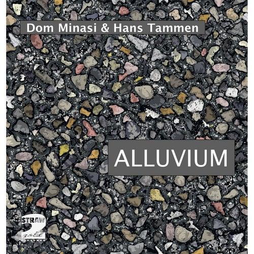 Alluvium by Dom Minasi