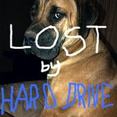 Lost by Hard Drive