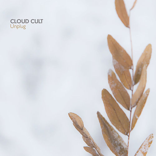 Unplug von Cloud Cult