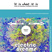 It Is What It Is: Music for Relaxation, Meditation and Sleep by Electric Dreams