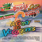 A Gozar en Vacaciones by Various Artists