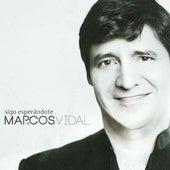 Sigo Esperándote by Marcos Vidal