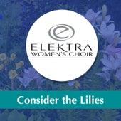 Consider the Lilies by Elektra Women's Choir