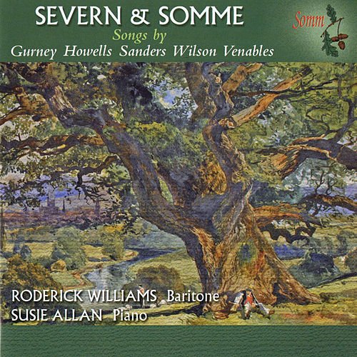Severn & Somme by Roderick Williams
