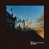 Ma Fleur by Cinematic Orchestra