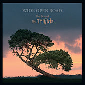 Wide Open Road: The Best Of The Triffids by Triffids