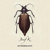 Entomology by Josef K