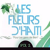 Les fleurs d'Haïti, vol. 2 (Pour les gens de bien) by Various Artists