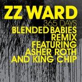 365 Days by ZZ Ward