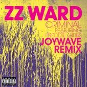 Criminal by ZZ Ward