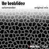 Salamander by The Beatsliders