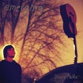 Emerging by Shane Palko