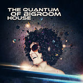 The Quantum of Bigroom House by Various Artists