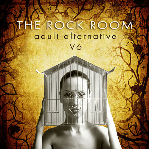 The Rock Room: Adult Alternative, Vol. 6 by Various Artists