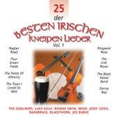 25 der Besten Irischen Kneipen Lieder, Vol. 1 by Various Artists