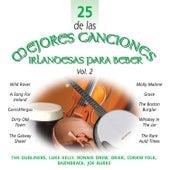 25 de las Mejores Canciones IrlandesasPara Beber, Vol. 2 by Various Artists
