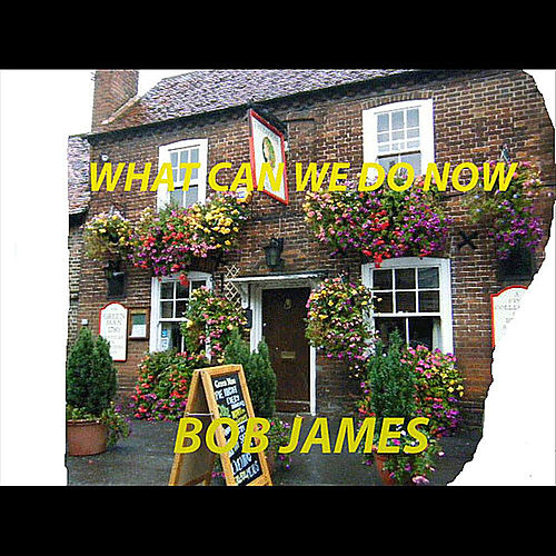 What Can We Do Now - Single by Bob James