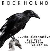 Rock Hound: Alternative Pop Rock, Vol. 9 by Various Artists