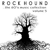 Rock Hound: The 60's Music Collection, Vol. 5 by Various Artists