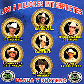 Los 7 Mejores Interpretes by Various Artists