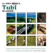 La Vera Musica Tubi Irlandese by Various Artists
