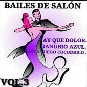 Bailes de Salón Vol. 3 by Various Artists