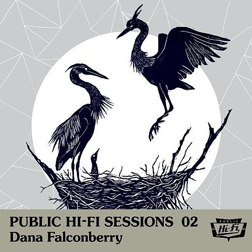 Public Hi-Fi Sessions 02 by Dana Falconberry