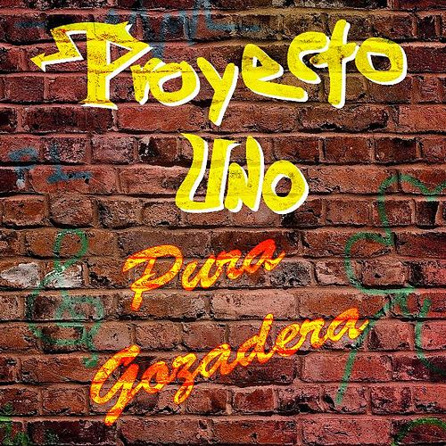 Pura Gozadera by Proyecto Uno