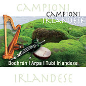 Campioni Irlandese - Bodhrán / Arpa / Tubi Irlandese by Various Artists