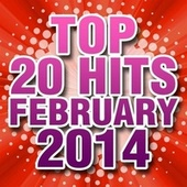 Top 20 Hits February 2014 by Piano Tribute Players