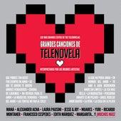 Un CD de Telenovela von Various Artists