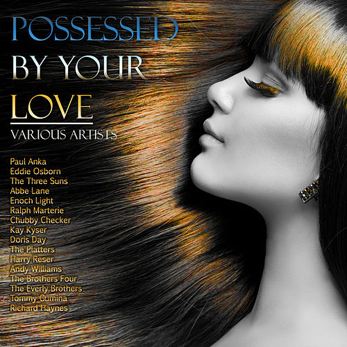 Possessed by Your Love by Various Artists