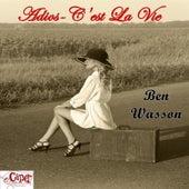 Adios - C'est La Vie by Ben Wasson