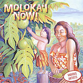 Molokai Now by Various Artists