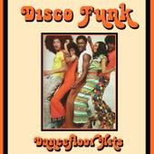 Disco Funk Dancefloor Hits by Various Artists