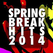 Spring Break Hits 2014 by Various Artists