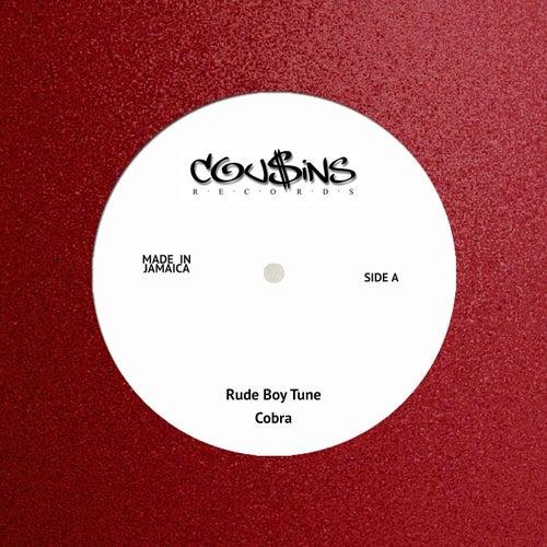 Rude Boy Tune by Cobra