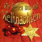 Wir freuen uns auf Weihnachten by Various Artists