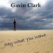 Say What You Want by Gavin Clark