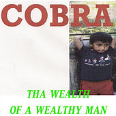 Tha Wealth of a Wealthy Man von Cobra