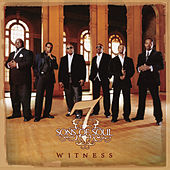 Witness by 7 Sons Of Soul